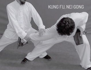 Kung-fu, Nei Gong, Difesapersonale